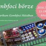 gomb_borze